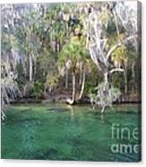 Blue Spring State Park Florida Canvas Print