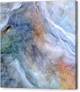 Blue Wolf In Mist Canvas Print