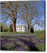 Bluebells In The Pleasure Grounds, Emo Canvas Print