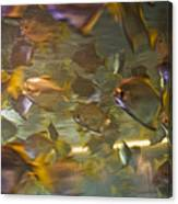 Blurred Image Of Fish Swimming In An Canvas Print