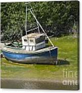 Boat On Banks Of Dee Canvas Print