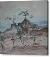 Bodega Head Canvas Print