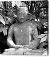 Bold Buddah Canvas Print