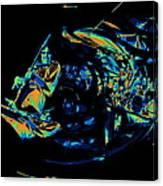 Tb Cosmic Swirl Canvas Print