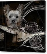 Bone-a-fide-ride Canvas Print