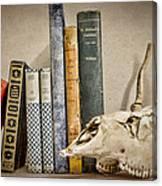 Bone Collector Library Canvas Print