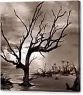 Boneyard Beach Canvas Print