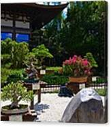 Bonsai Garden Canvas Print