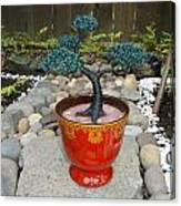 Bonsai Tree Medium Red Glass Vase Planter Canvas Print