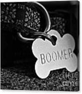 Boomer's Canvas Print
