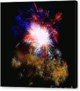 Born On The 4th Of July Canvas Print