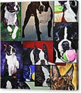 Boston Acrylic Collage Canvas Print