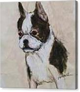 Boston Terrier Puppy Love Canvas Print
