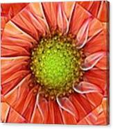 Botanical Swirl Canvas Print