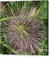 Bottle Brush By Nature Canvas Print