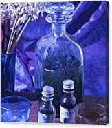 Bottles Of Perfume Essence  Canvas Print