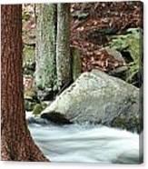 Boulder And Stream Canvas Print