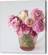 Bouquet Of  Pink Ranunculus Canvas Print