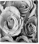 Bouquet Of Roses With Water Drops In Black And White Canvas Print