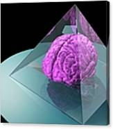 Brain Trapped In A Pyramid, Artwork Canvas Print