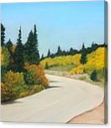 Brainard Lake Road Canvas Print
