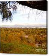 Branch Over River Bed Canvas Print