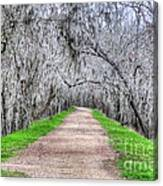 Brazos Bend Pass Canvas Print