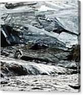 Breaking Ice Canvas Print