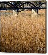 Bridge And Pampas Grass Canvas Print