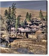 Bridge Over A Creek Canvas Print