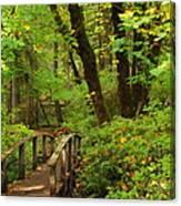Bridge To A Fairytale Canvas Print