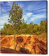 Bright Light On The Badlands Canvas Print