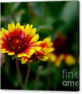 Brighten Up Your Day Canvas Print