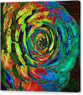 Brilliant Succulent Canvas Print