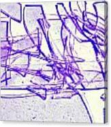 Broken Glass Purple Canvas Print