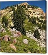 Brokeoff Mountain Canvas Print