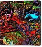 Brook Texture 22 Canvas Print