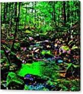 Brook Texture 24 Canvas Print