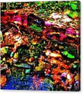 Brook Texture 54 Canvas Print