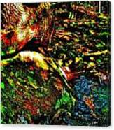 Brook Texture 58 Canvas Print
