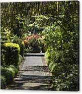 Brookgreen Gardens Path Canvas Print