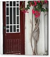 Brown Door In Greece Canvas Print