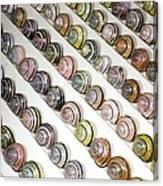 Brown-lipped Snail Colour Variants Canvas Print