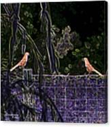 Brown Thrush Canvas Print