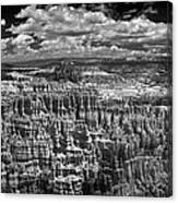 Bryce Canyon - Black And White Canvas Print