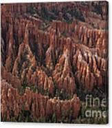 Bryce Canyon At Dusk Canvas Print