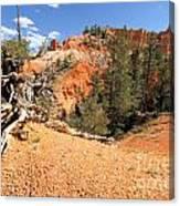 Bryce Canyon Canyon Canvas Print