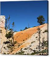 Bryce Canyon Character Canvas Print