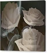 Bubbling Beauty  Canvas Print