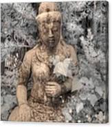 Buddha Nature Canvas Print